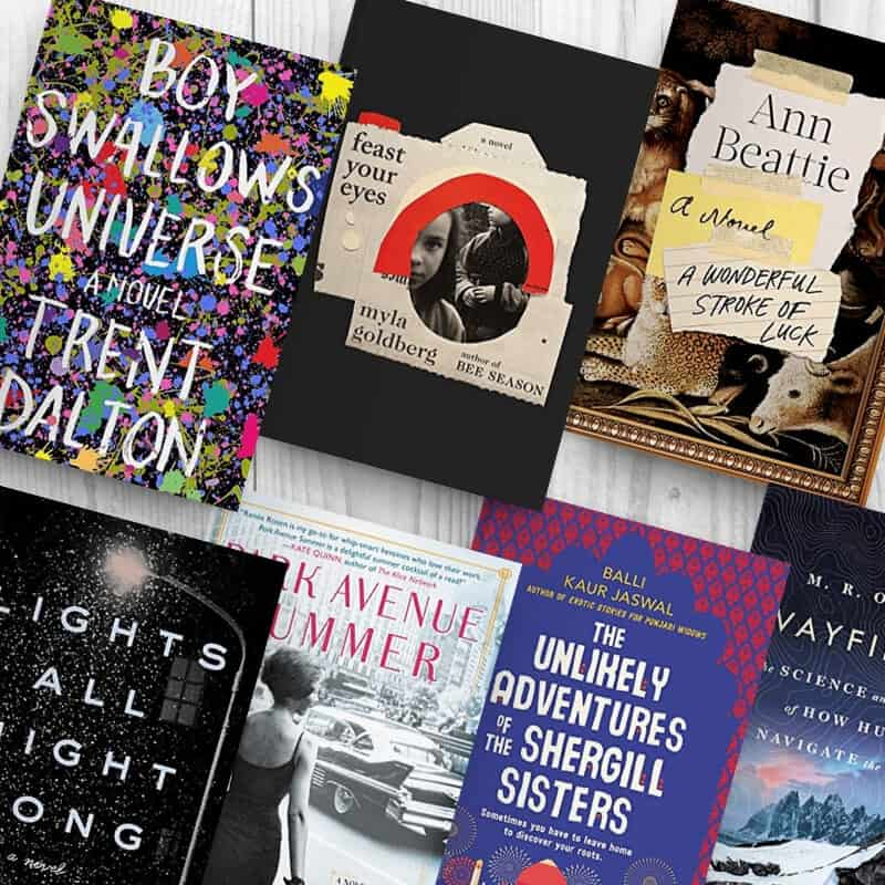 March 2019 reading list, including Boy Swallows Universe, Feast Your Eyes, A Wonderful Stroke of Luck, Lights All Night Long, Park Avenue Summer, The Unlikely Adventures of the Shergill Sisters, and Wayfinding.