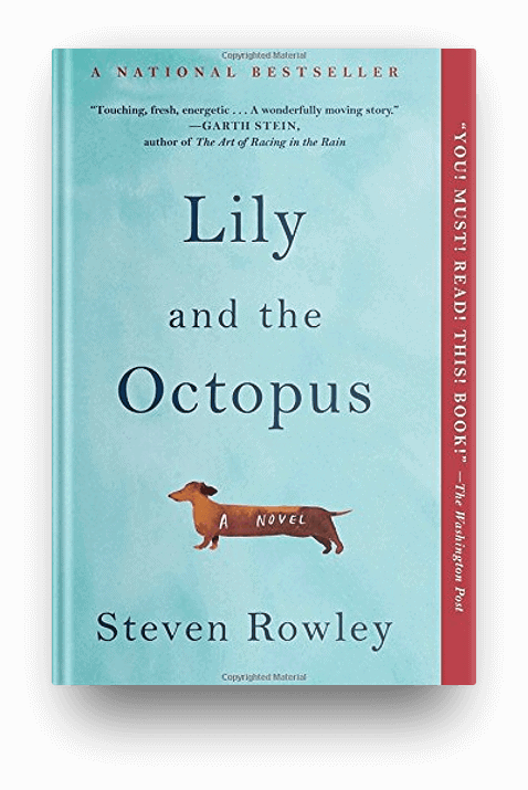 Lily and the Octopus by Stephen Rowley