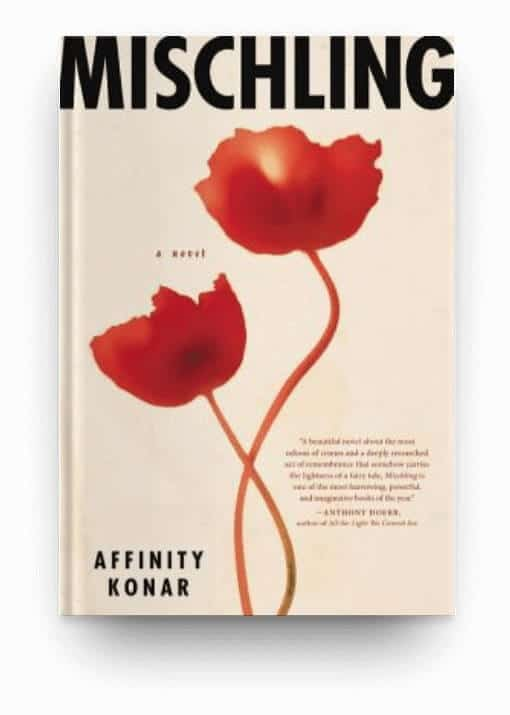 Mischling by Affinity Konar, a tragedy book about WWII