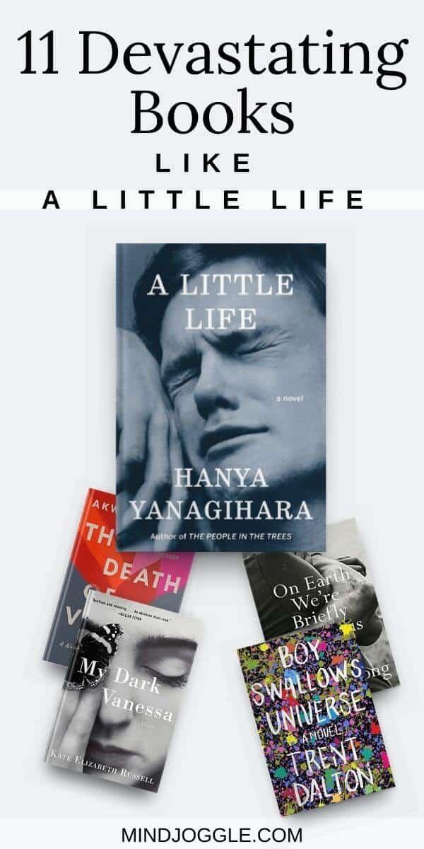11 Devastating Books Like A Little Life